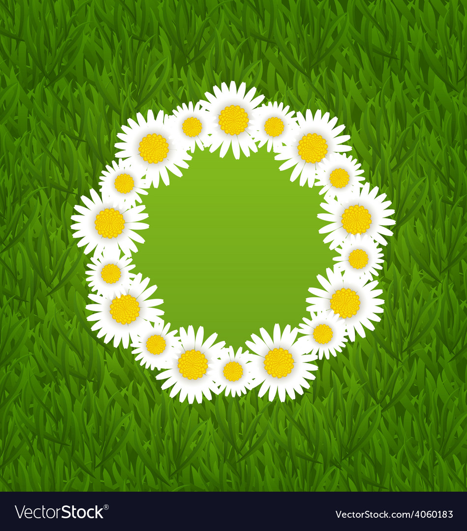 Spring freshness card with grass and camomiles vector | Price: 1 Credit (USD $1)
