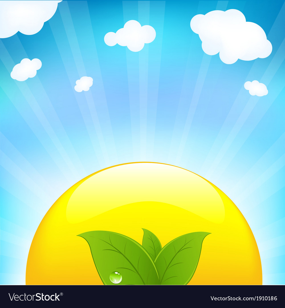 Sun with beams and sprout vector | Price: 1 Credit (USD $1)