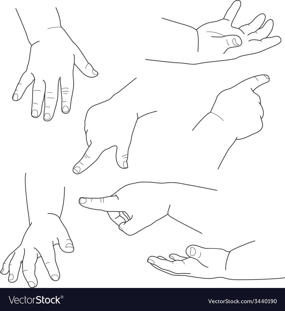 Baby hand different gestures vector | Price: 1 Credit (USD $1)