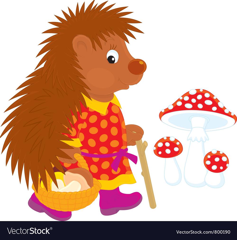 Hedgehog mushroomer vector | Price: 1 Credit (USD $1)