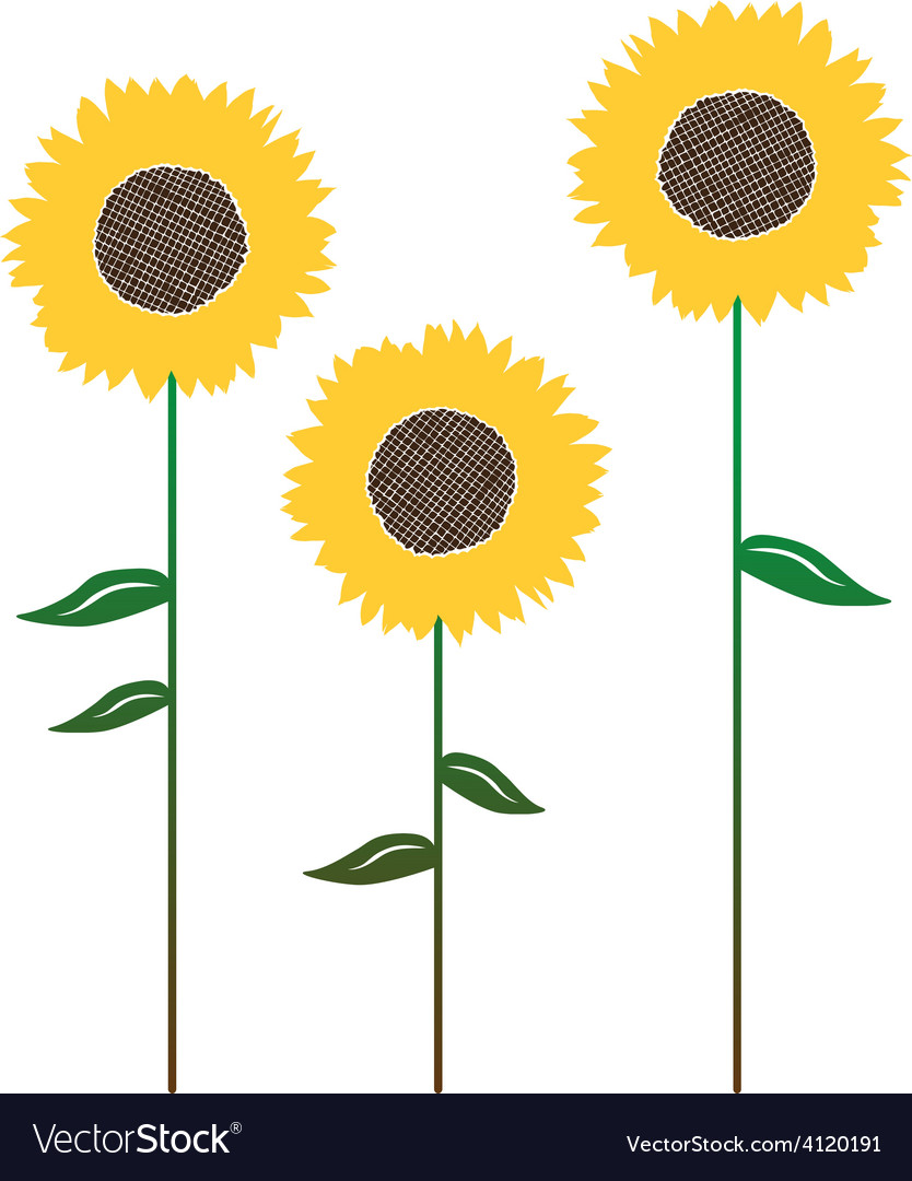 Floral background with sunflower vector   Price: 1 Credit (USD $1)