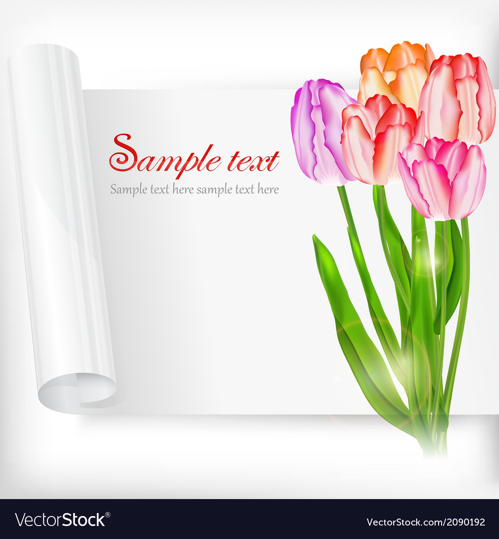 Sheet of paper and tulips on vector   Price: 1 Credit (USD $1)