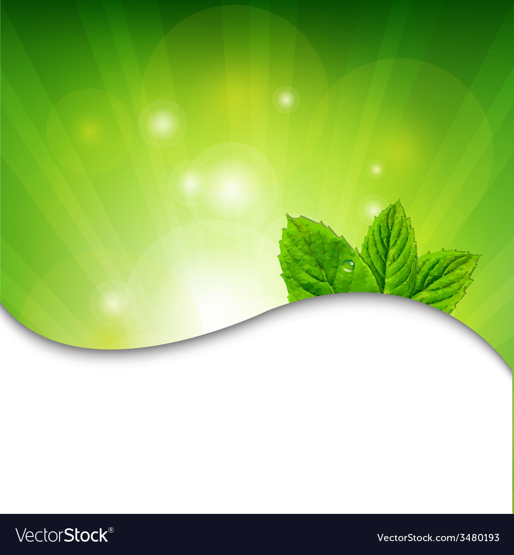 Green wall with green leaves vector | Price: 1 Credit (USD $1)