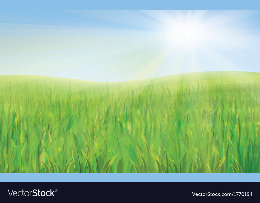 Sky green grass vector | Price: 1 Credit (USD $1)