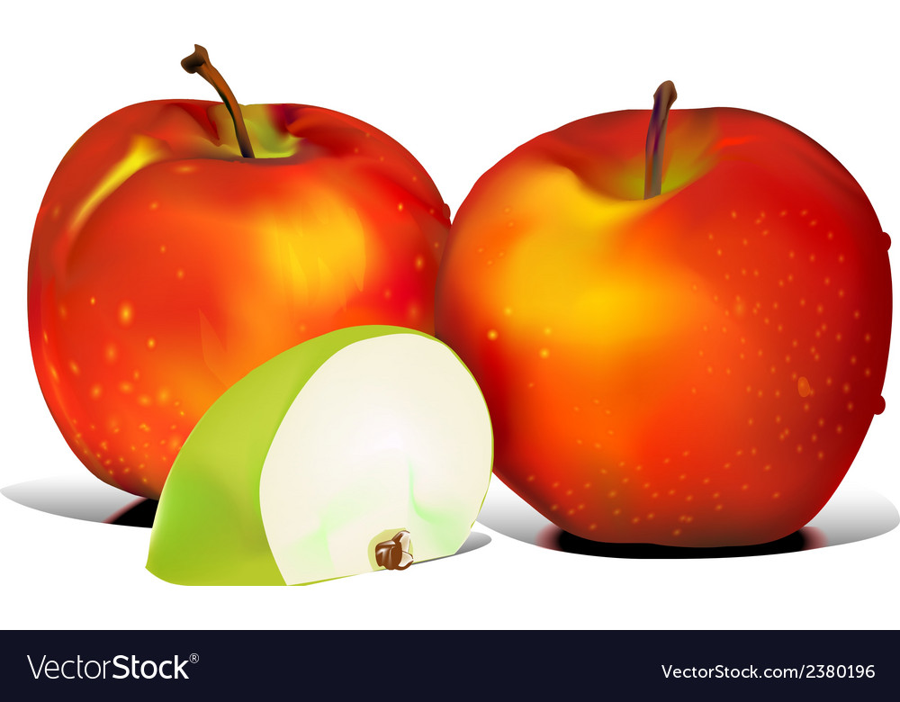 Apple graphics vector | Price: 1 Credit (USD $1)