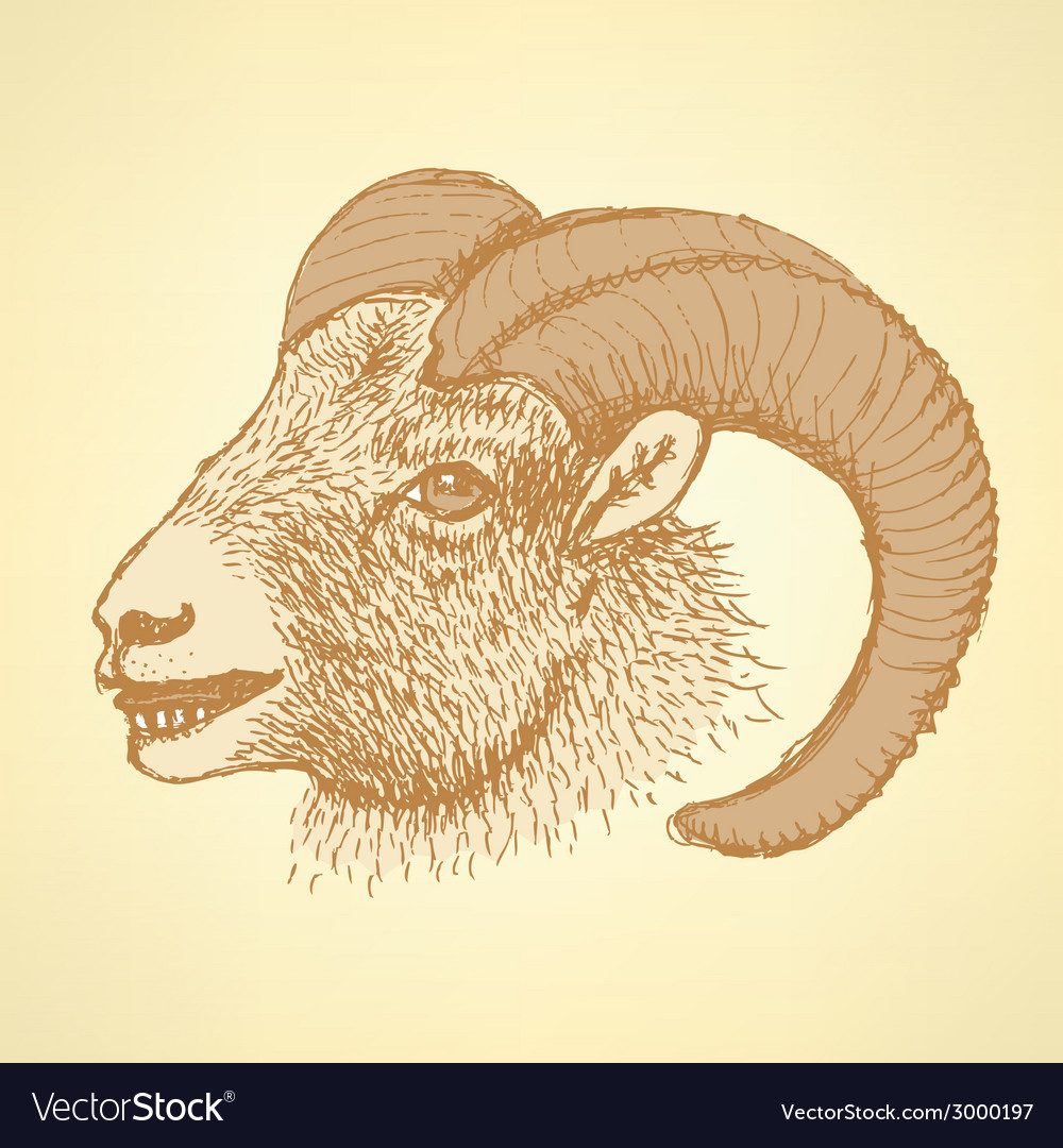 Sketch new year ram in vintage style vector | Price: 1 Credit (USD $1)