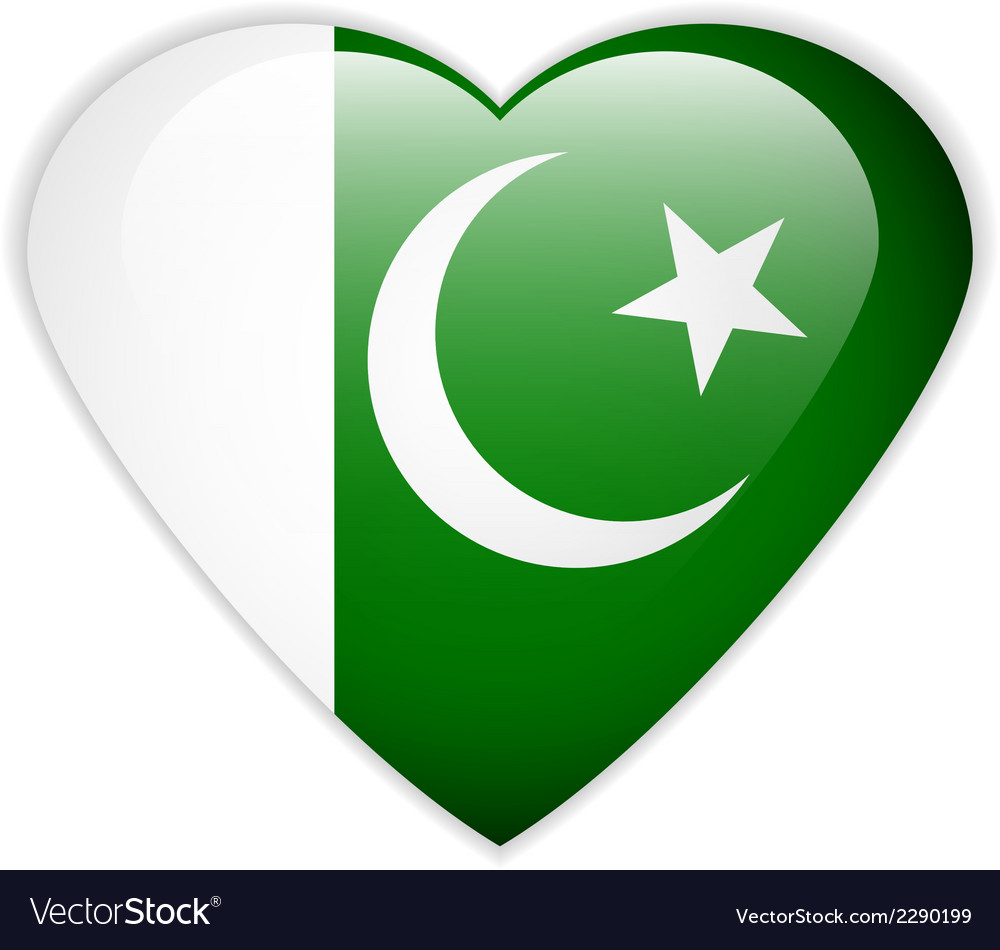 Pakistan flag button vector | Price: 1 Credit (USD $1)