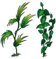 Plant set vector