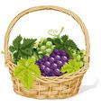 Wine basket vector