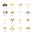 Seed icon flat vector