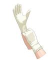 Hands in sterile gloves vector