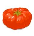 Big tomato 1 vector
