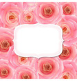 Label with pink rose vector