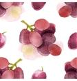 Watercolor grapes seamless vector