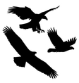 Set of black silhouette three eagles vector