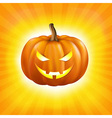 Sunburst background with pumpkin vector