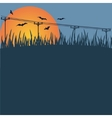 Background - a sunset bats vector