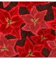 Red lilies pattern vector