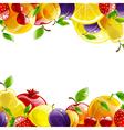 Banner of fresh fruit vector
