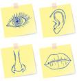 Senses sketches vector