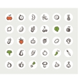 Set of flat design fruit and vegetables icons vector
