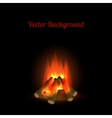 Bonfire background vector
