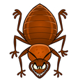 Cartoon bedbug vector