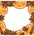 Frame - cinnamon star anise and orange vector