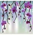 Background with orchids vector