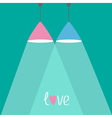 Pink and blue lamps with rays of light flat design vector
