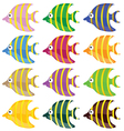 Sweet and funny fish color vector
