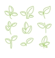 Set of green leaves design elements vector