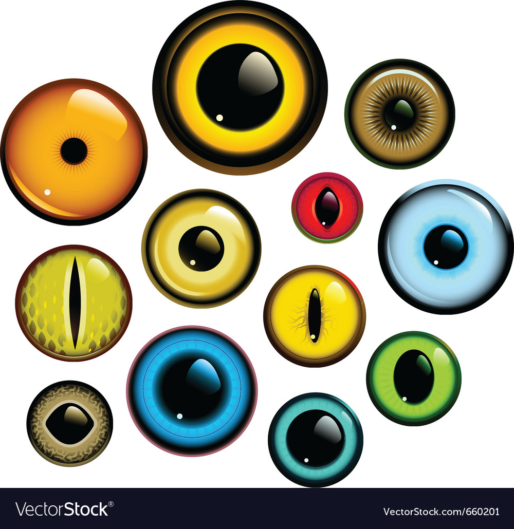 Eye set vector | Price: 1 Credit (USD $1)