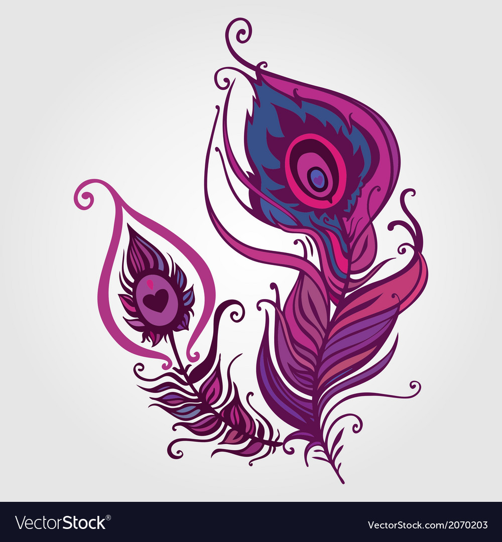 Beautiful peacock feather vector | Price: 1 Credit (USD $1)