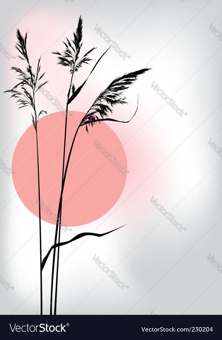Reed at sunset vector | Price: 1 Credit (USD $1)
