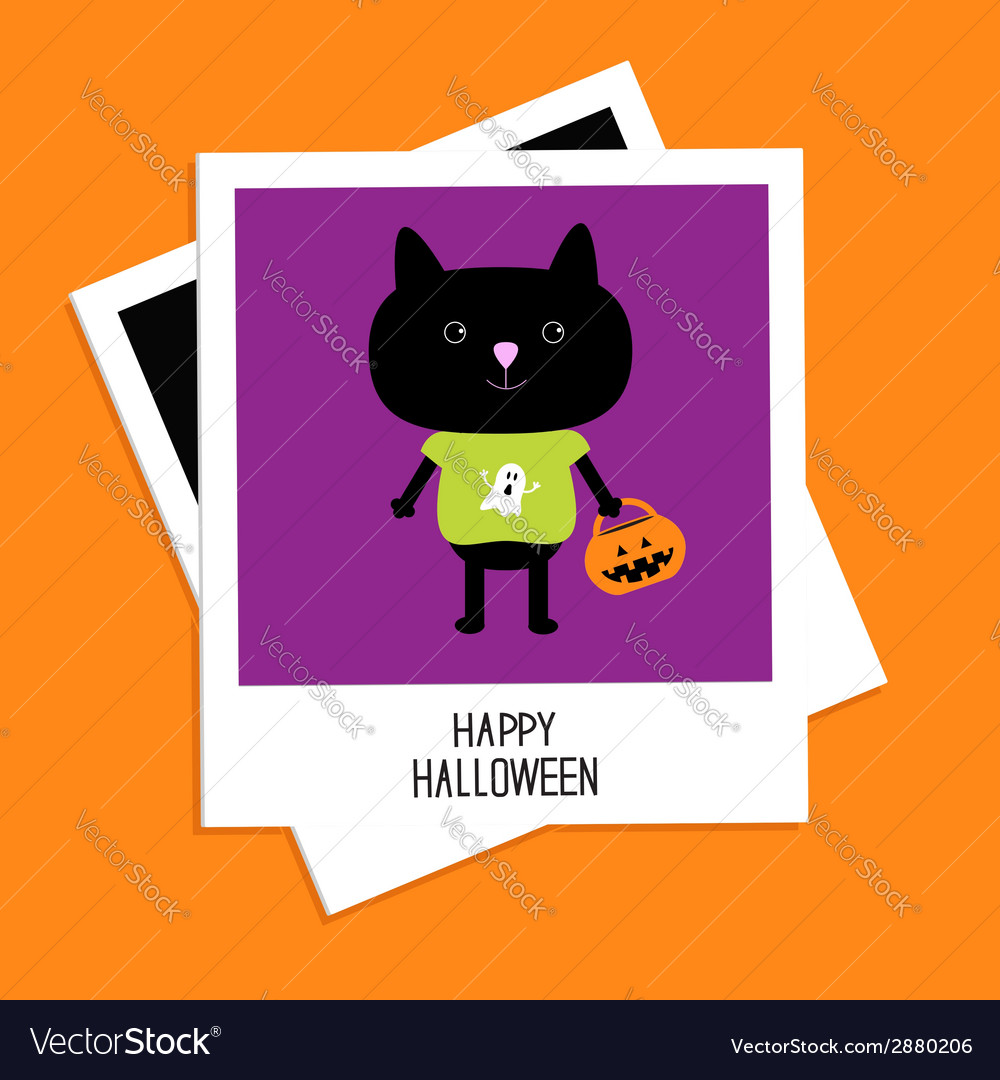Instant photo with black cat and pumpkin bucket vector | Price: 1 Credit (USD $1)