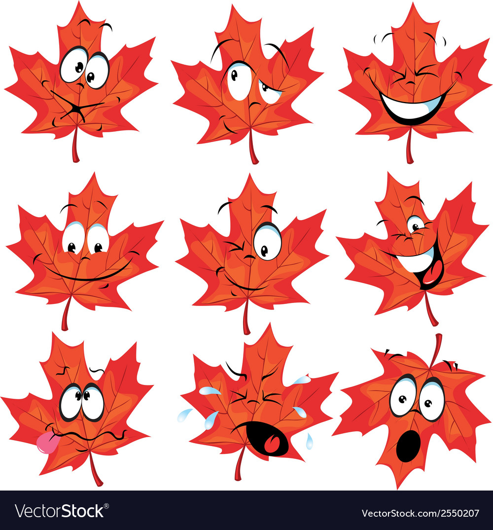 Red maple leaf vector   Price: 1 Credit (USD $1)