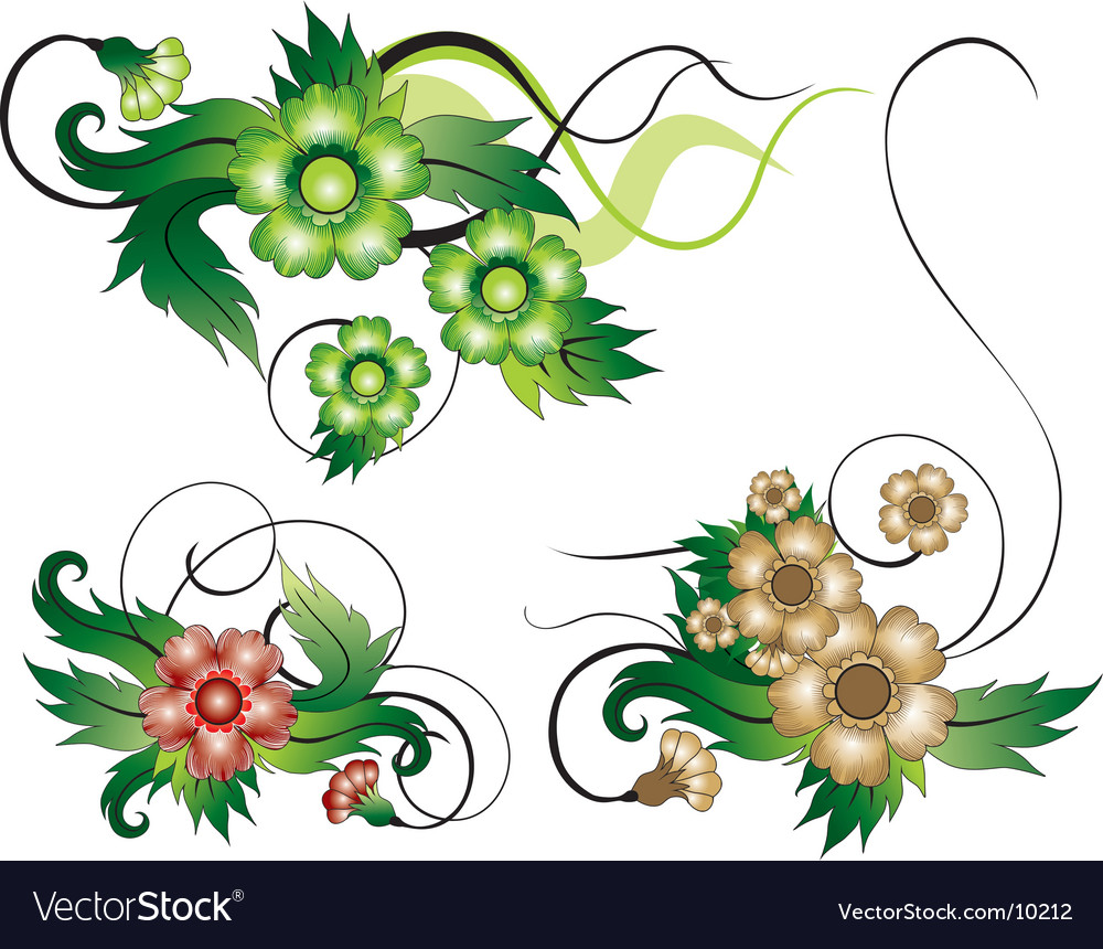 Floral compositions vector | Price: 1 Credit (USD $1)