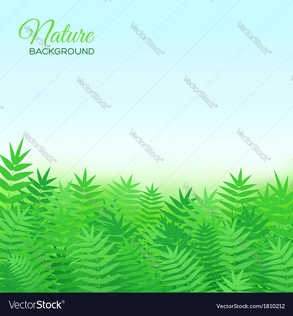 Natural background with grass vector | Price: 1 Credit (USD $1)