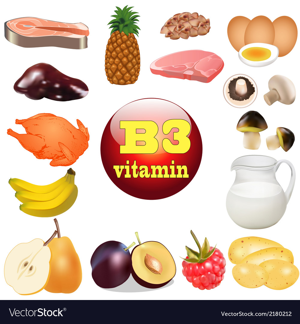 Three vitamin b the origin vector | Price: 1 Credit (USD $1)