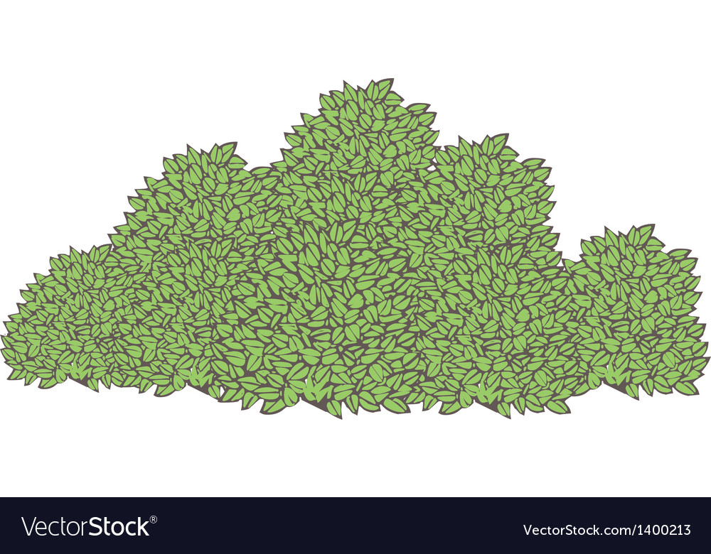 The bush vector | Price: 1 Credit (USD $1)