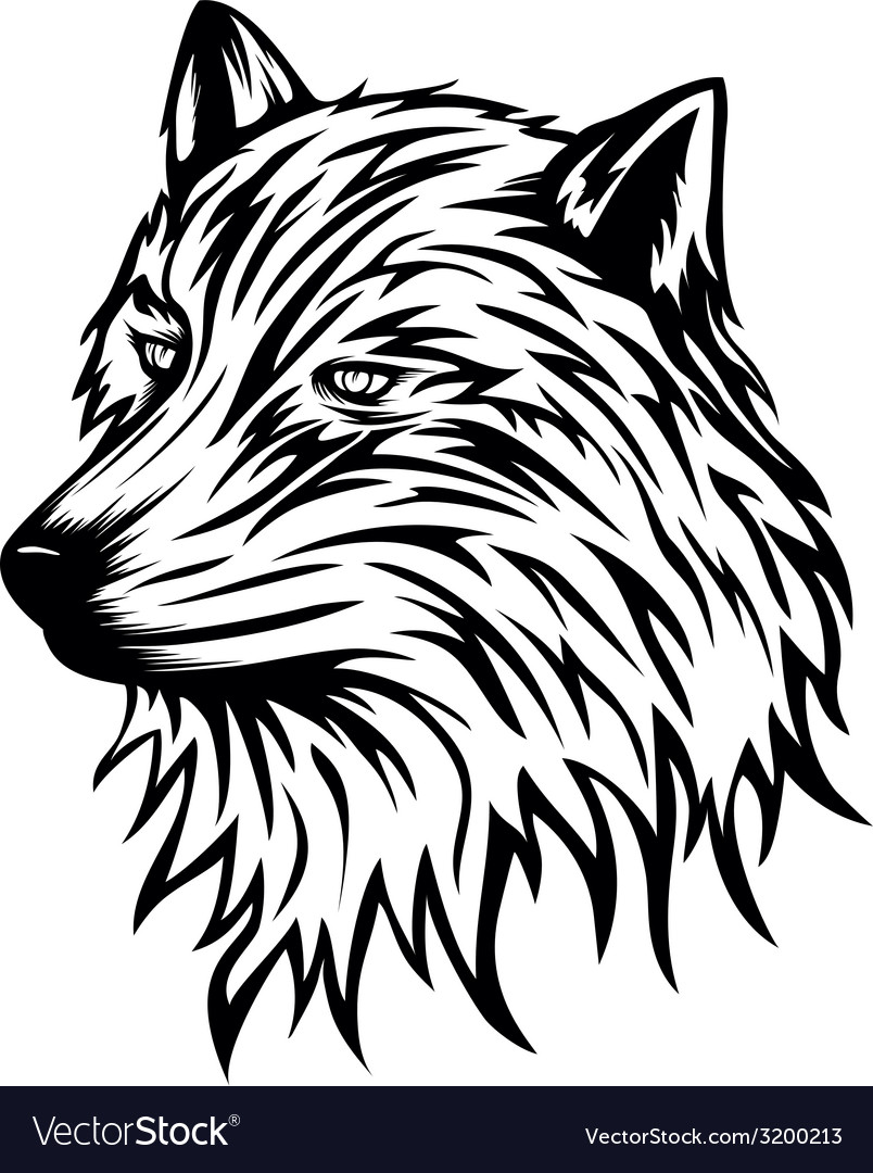 Wolf head vector | Price: 1 Credit (USD $1)