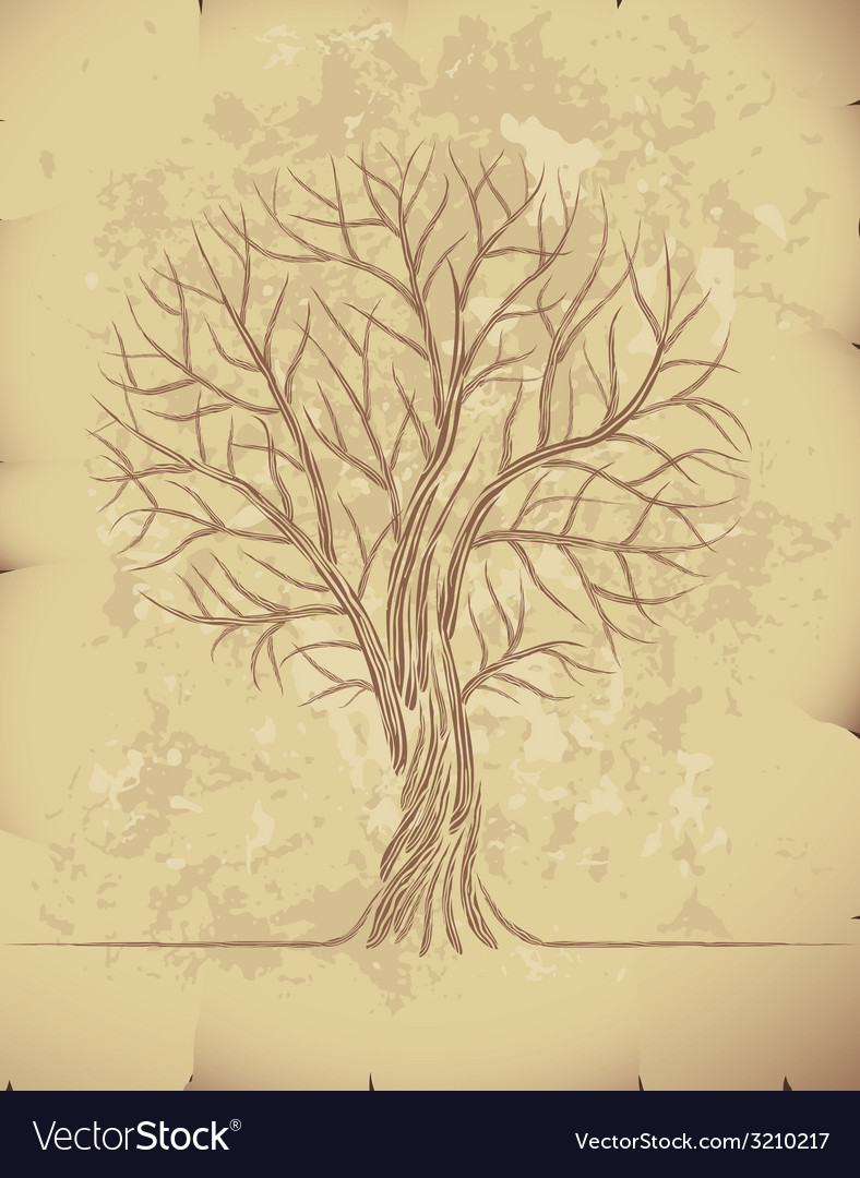 Tree on old paper vector | Price: 1 Credit (USD $1)