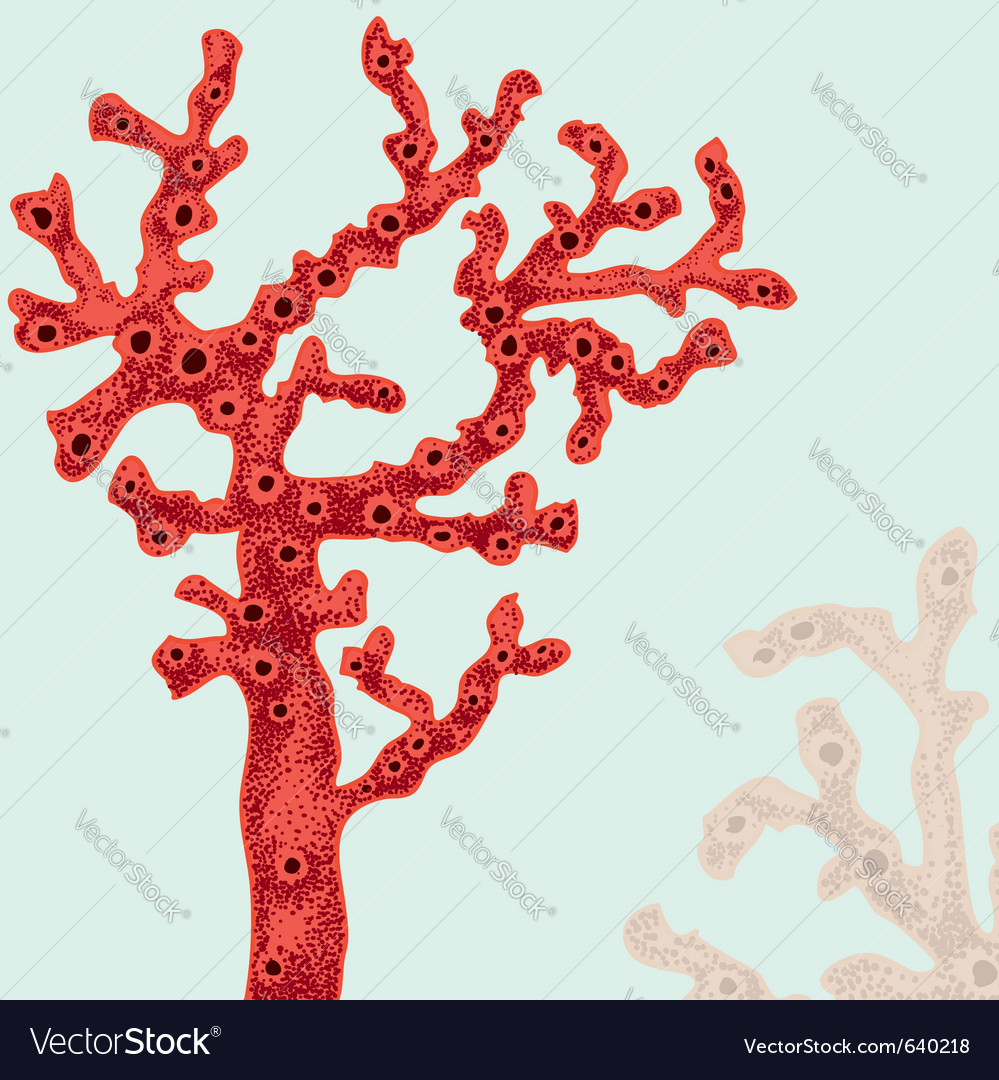 Coral poster vector | Price: 1 Credit (USD $1)