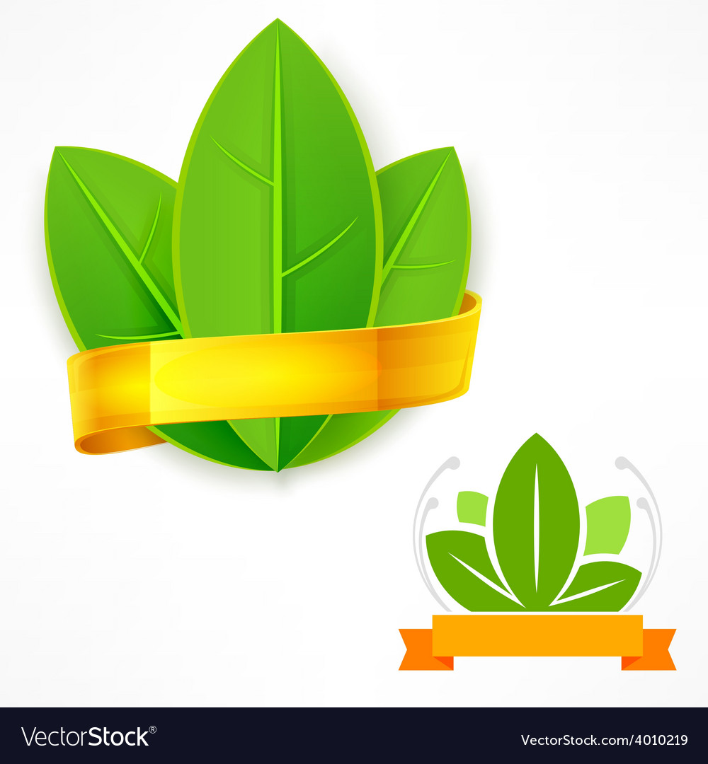 Green leaf with ribbon vector | Price: 1 Credit (USD $1)
