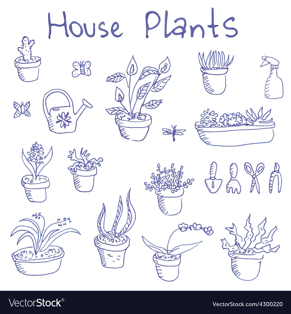 Liner pen hand drawn houseplants and garden tools vector | Price: 1 Credit (USD $1)
