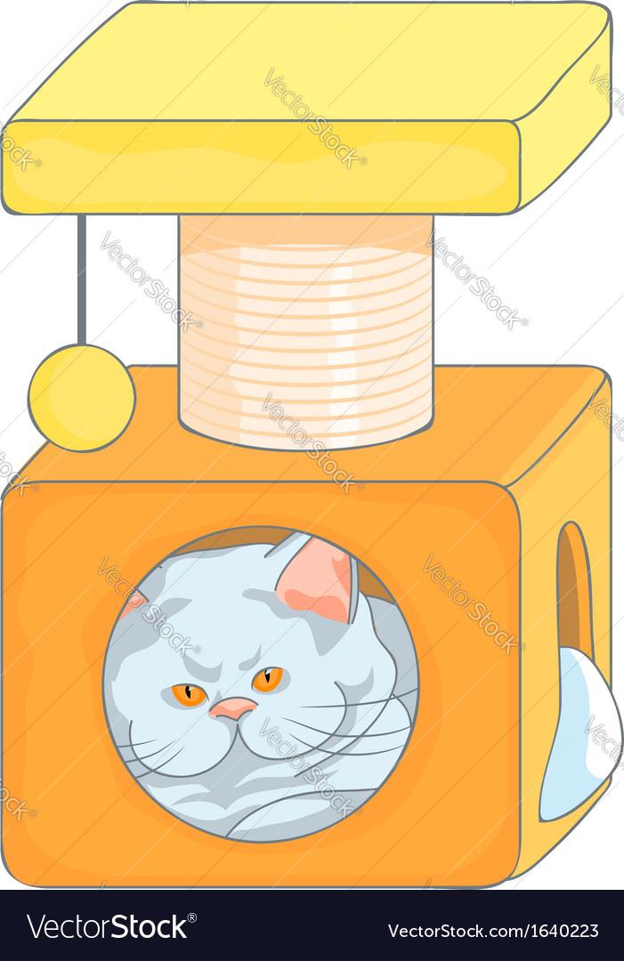 Cute british cat in the cat house vector   Price: 1 Credit (USD $1)
