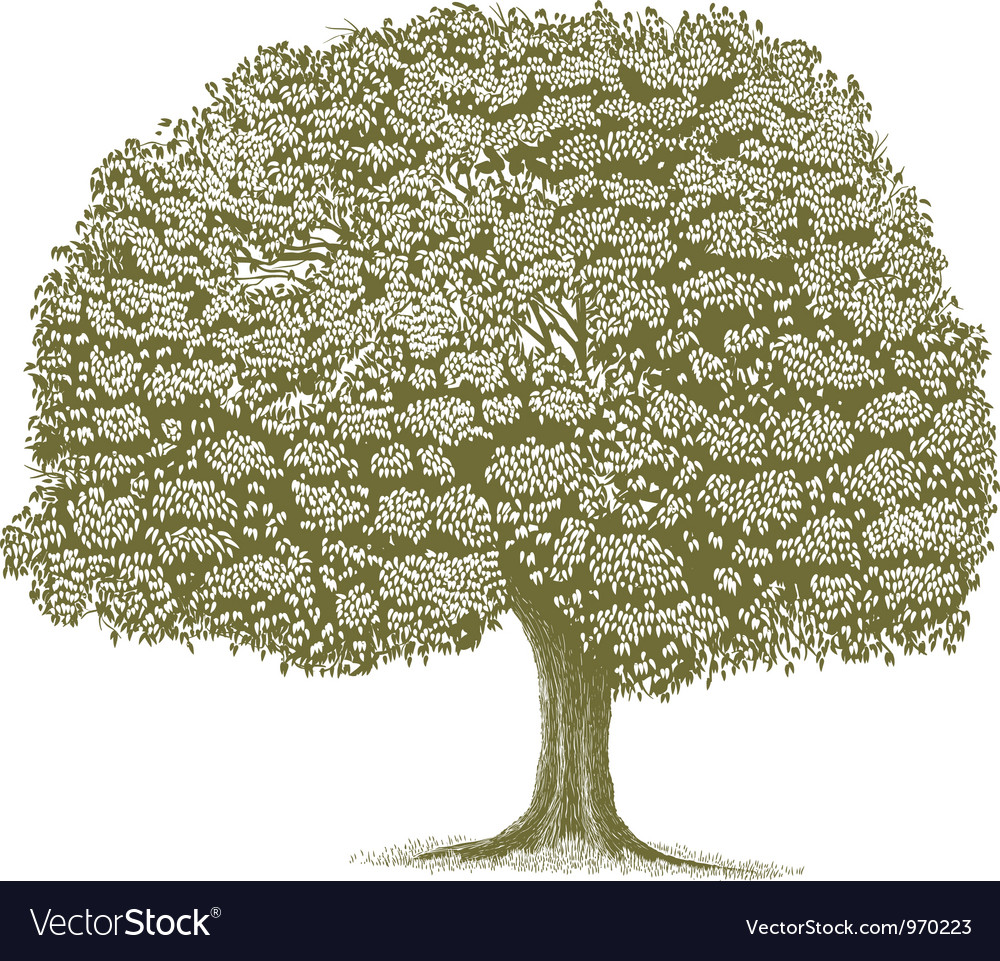 Woodcut tree vector | Price: 1 Credit (USD $1)