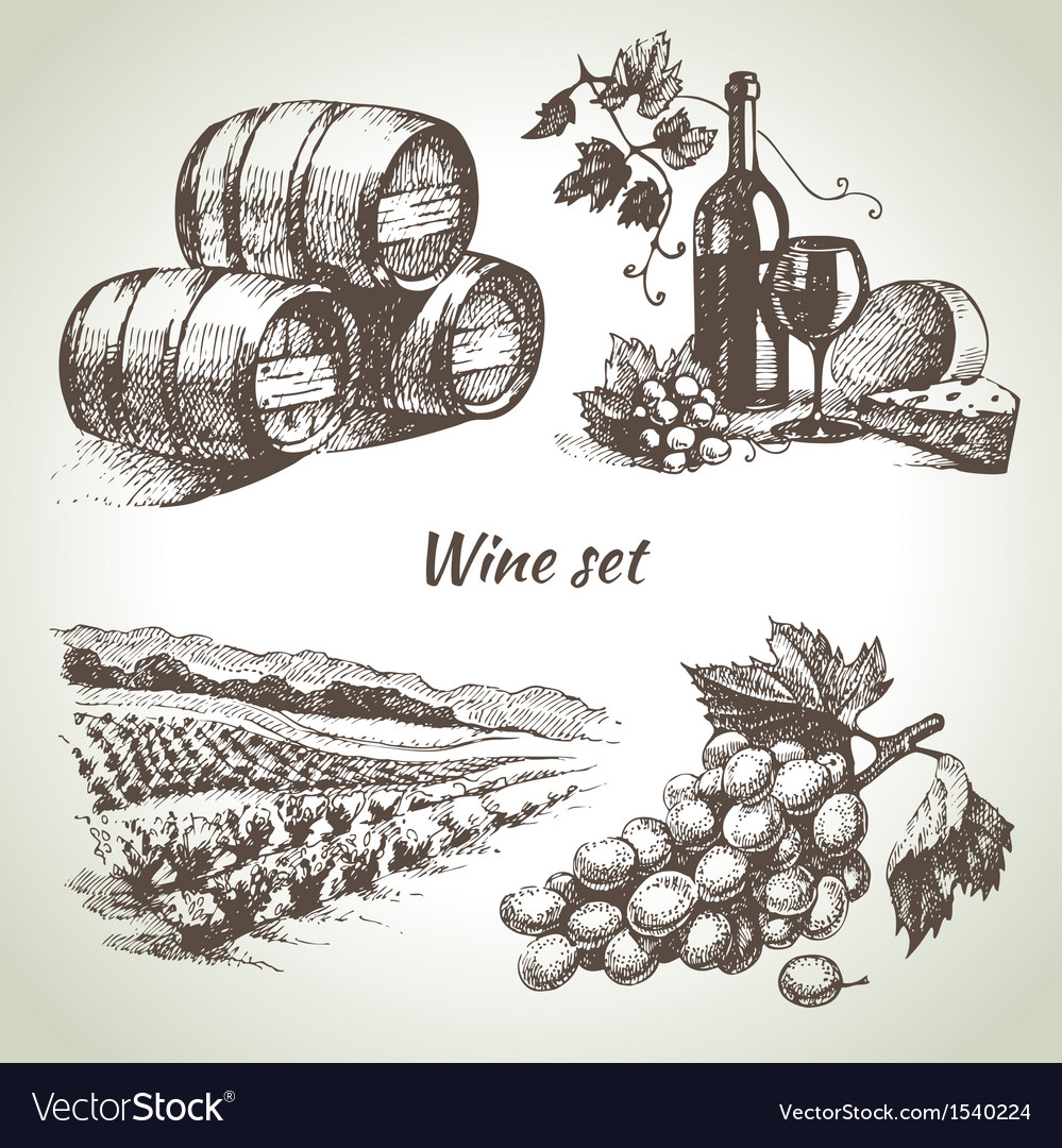 Hand drawn wine set vector | Price: 1 Credit (USD $1)