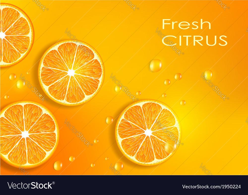 Orange background vector | Price: 1 Credit (USD $1)